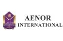 Aenor İnternational ( Maden Analizi ) Logosu